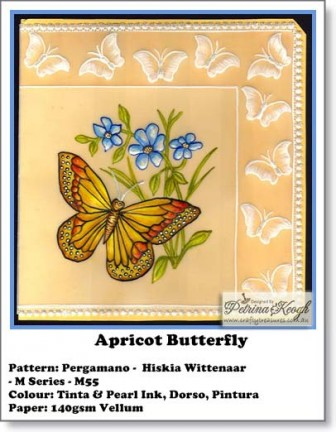 Apricot Butterfly