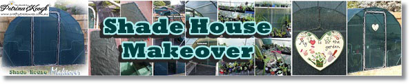 Shade House Makeover